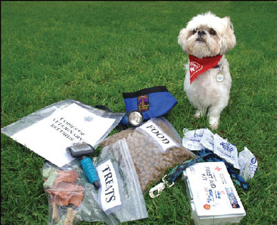 Dog with prepared food and other emergency items