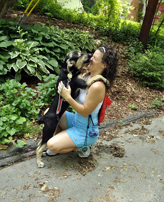 And then it was on to her best friend Katie, who she absolutely smothered with kisses! Sarah is just a pup and is learning good manner's from BlueDog's trainer, Amy. Amy has also taught Katie what they've learned, so that she can be consistent with Sarah's training during their walks!