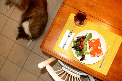 Dog by Kitchen Table