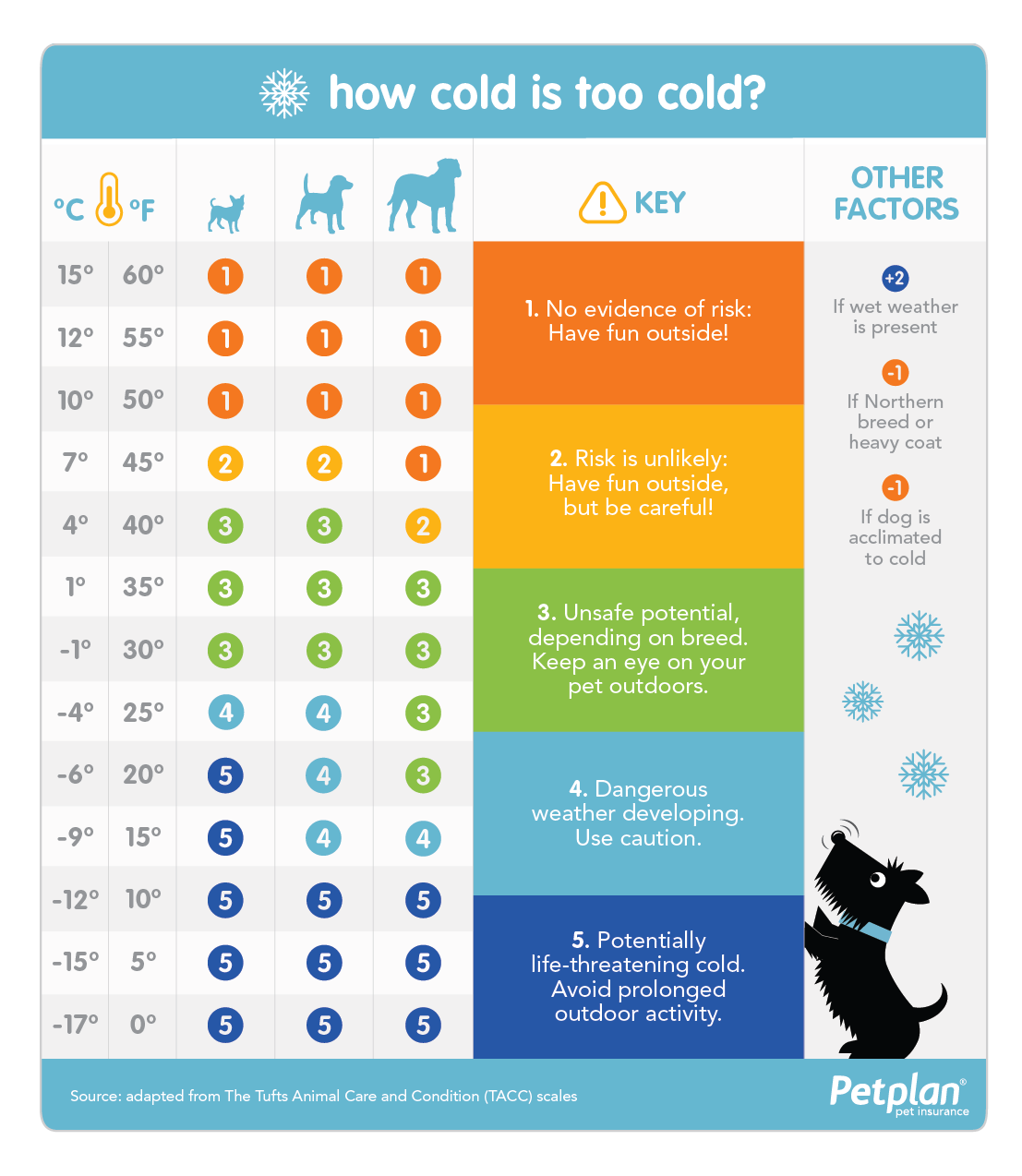 How Cold Is Too Cold Infographic