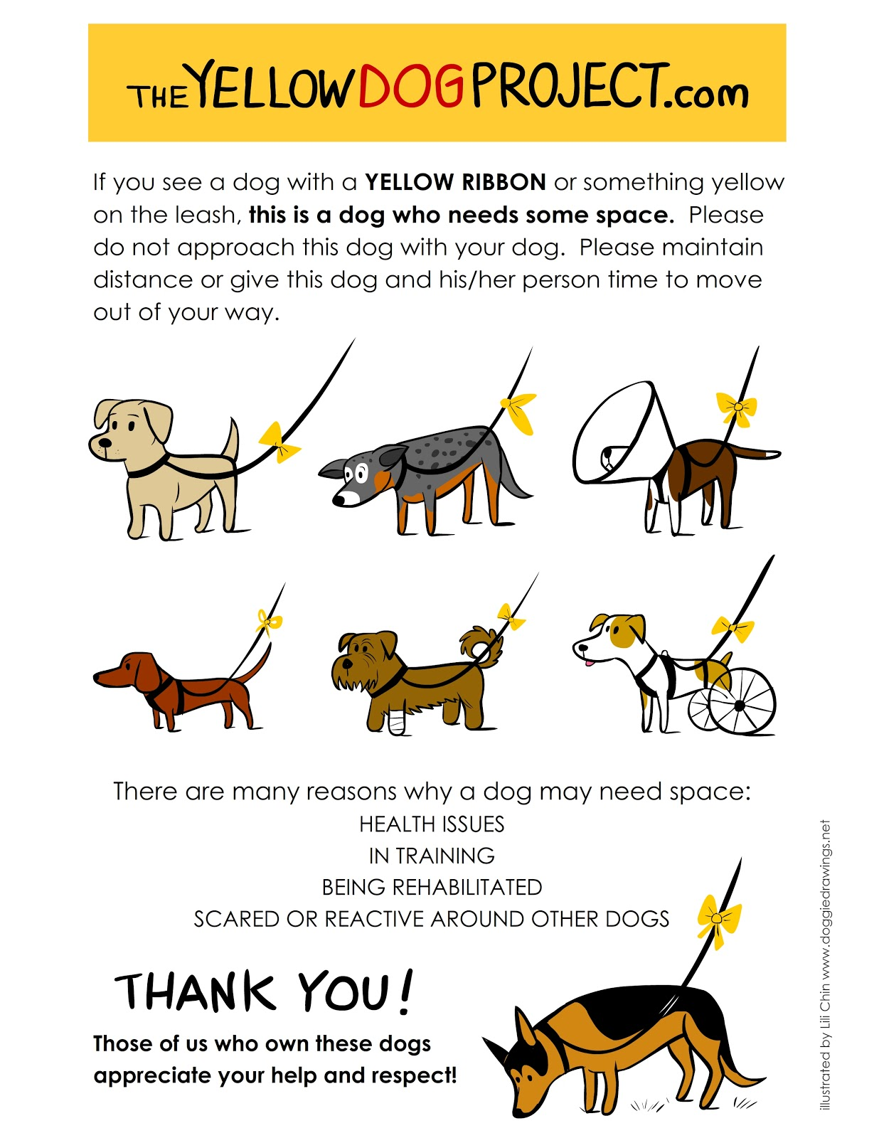 Yellow Dog Project Infographic