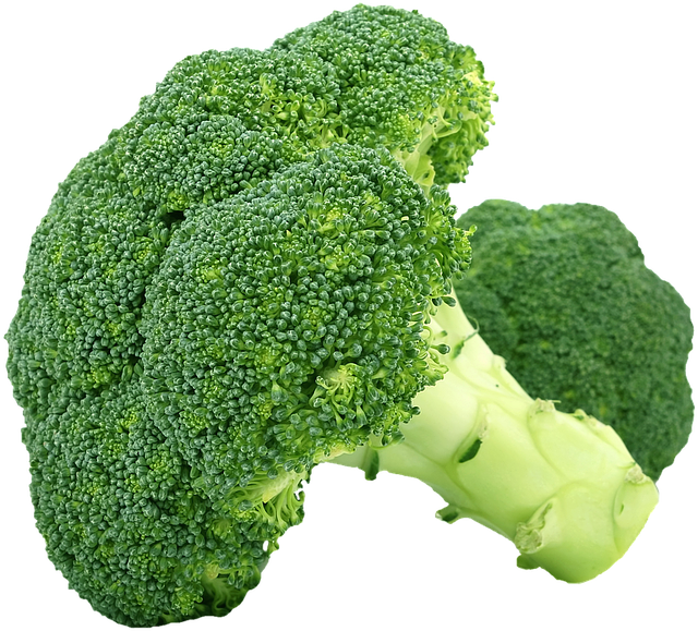Can my dog eat broccoli?
