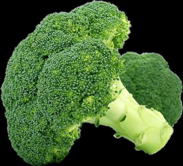 Can my dog eat broccoli?