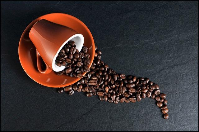 Can my dog eat coffee?