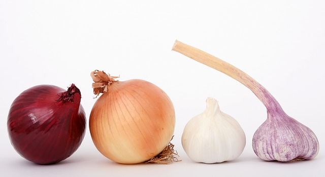 Can my dog eat onions?